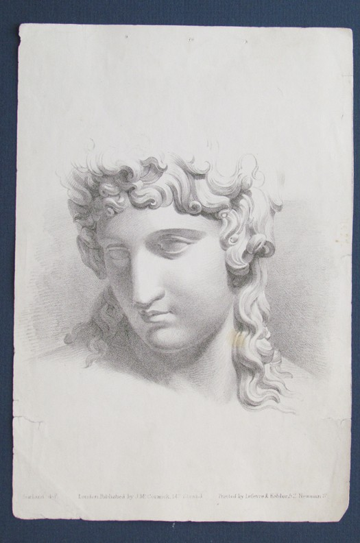 Antique Historic Art Anatomy Print Lithograph Print Female Portrait
