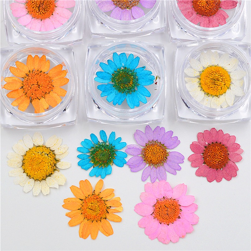6 colors Nail Art Natural Dried Flower UV Gel 3D Nail Salon Effect ...