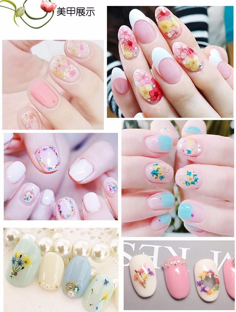 12 Colors Real Natural Petal Dry Dried Flower Nail Art Stickers Tips