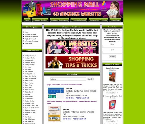 40 Google Adsense Automated Websites Store For Sale Ebay