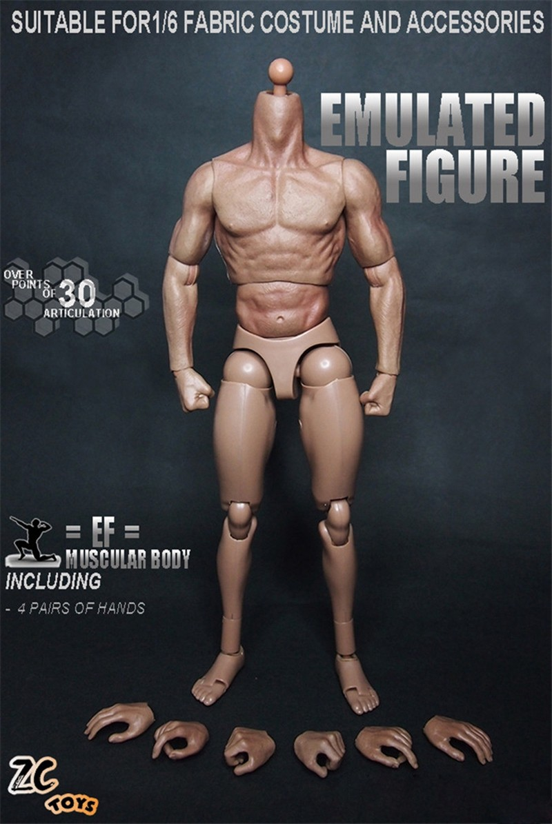 1/6 Scale ZC Toys Emulated Figure Muscular Body For Hot Toys ...