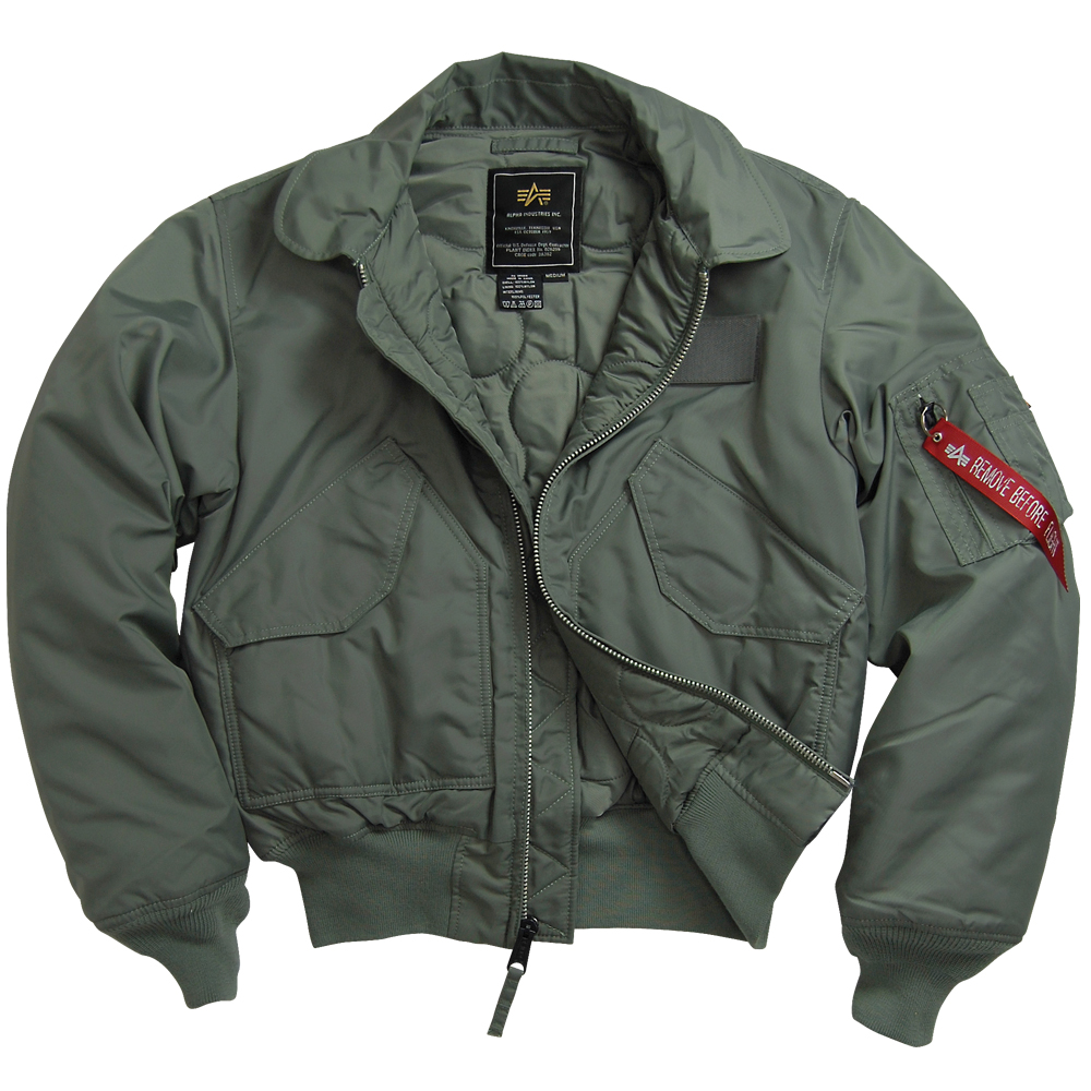 Alpha Industries McGuire 45 P Air Force Military Flight