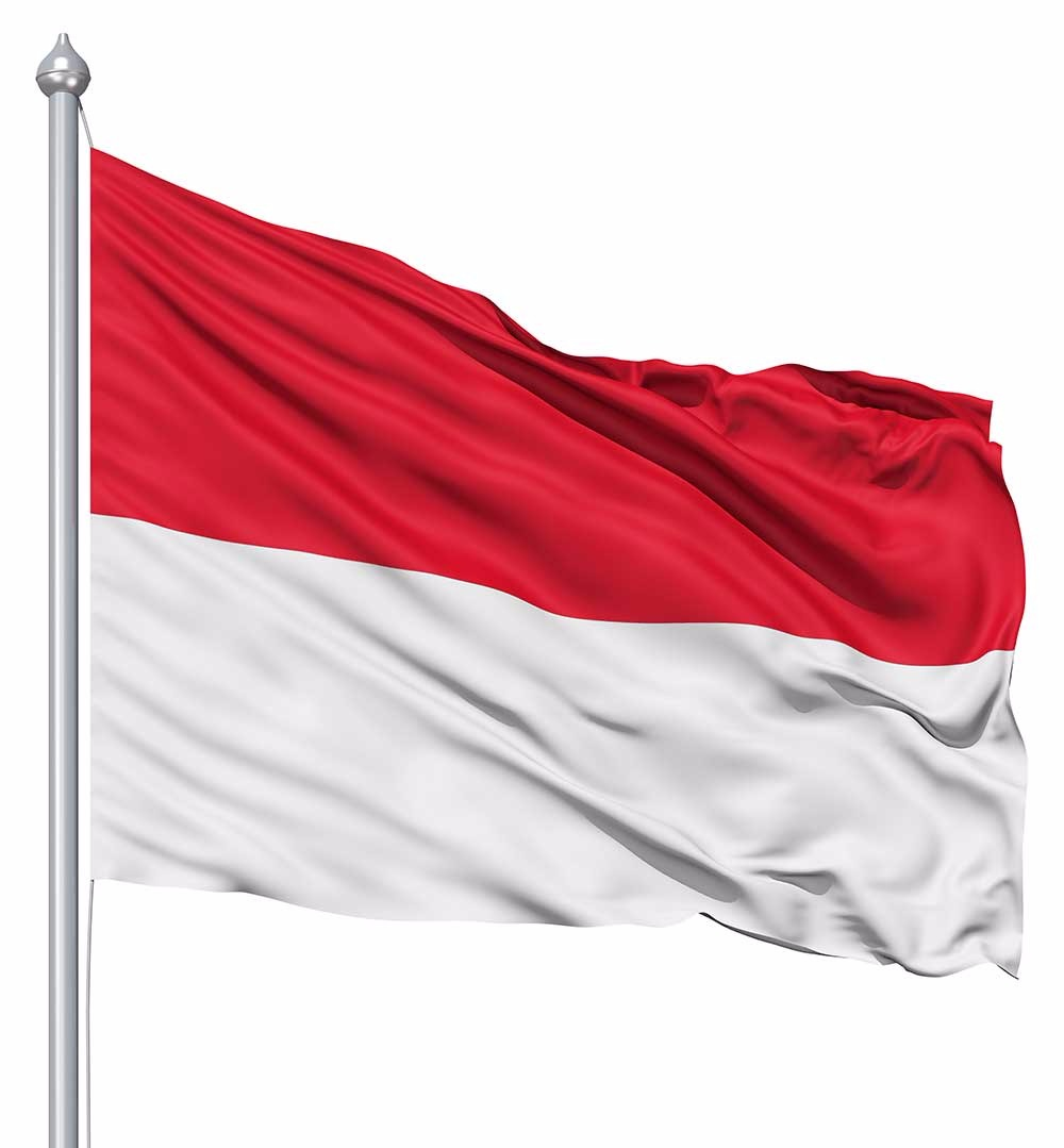 """INDONESIA 12/"""" X 18/"""" INCH COUNTRY FLAG BANNER ON 2 FOOT WOODEN STICK . NEW"""