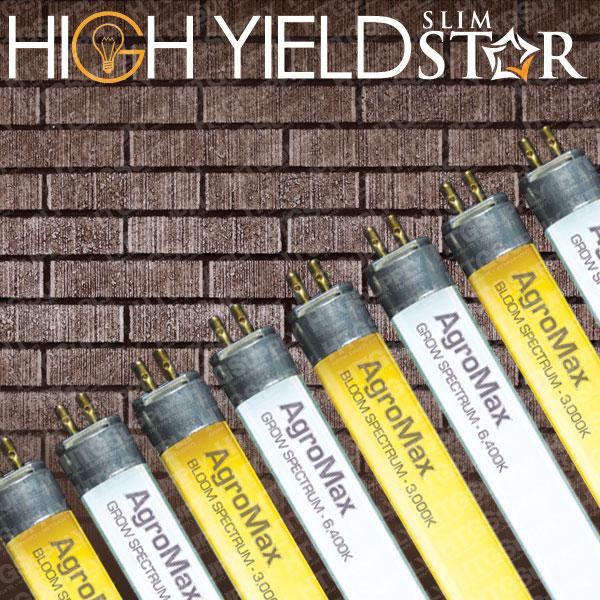 8 Bulb Fixture w 6500k Bulbs 120//240//277v GrowersHouse Grow Crew HO T5 V2 4/'