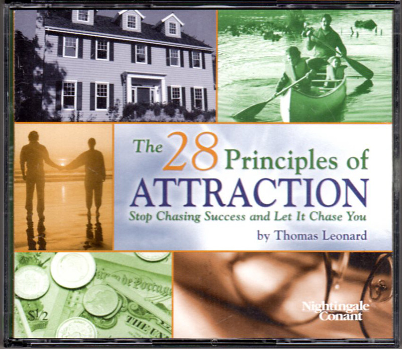 Image 0 of The 28 Principles of Attraction