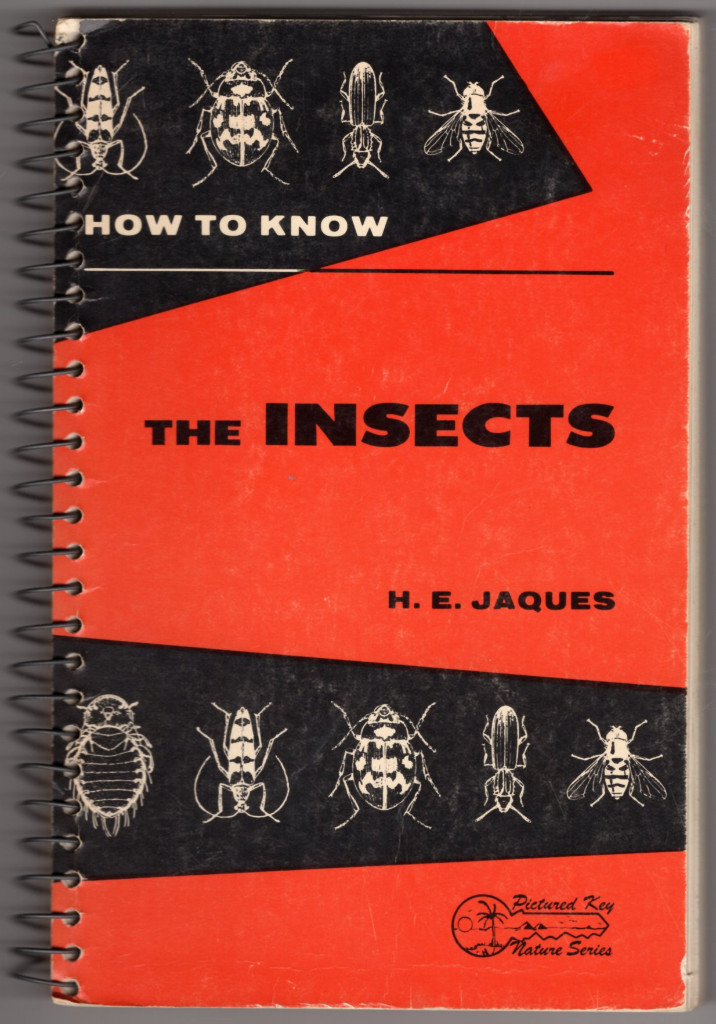 Image 0 of How to Know the Insects