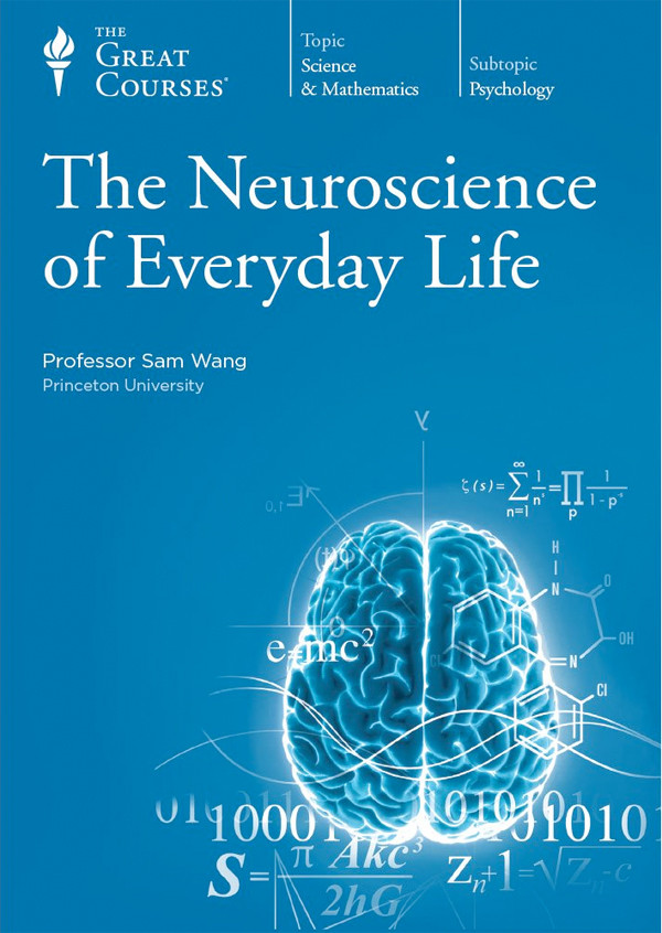 Image 0 of The Great Courses: The Neuroscience of Everyday Life