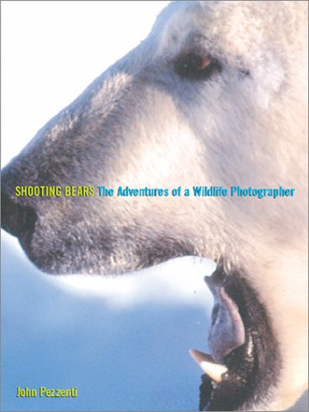Image 0 of Shooting Bears: The Adventures of a Wildlife Photographer