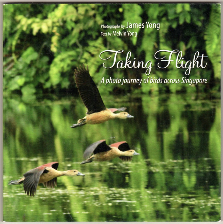Image 0 of Taking Flight: A Photo Journey of Birds Across Singapore