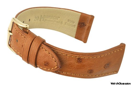 f78190d2d if you want to go for something different you could try a Hirsch Massai, a  genuine Ostrich hide, would look really nice on that Longines.
